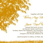Wedding Invitation Ideas Template